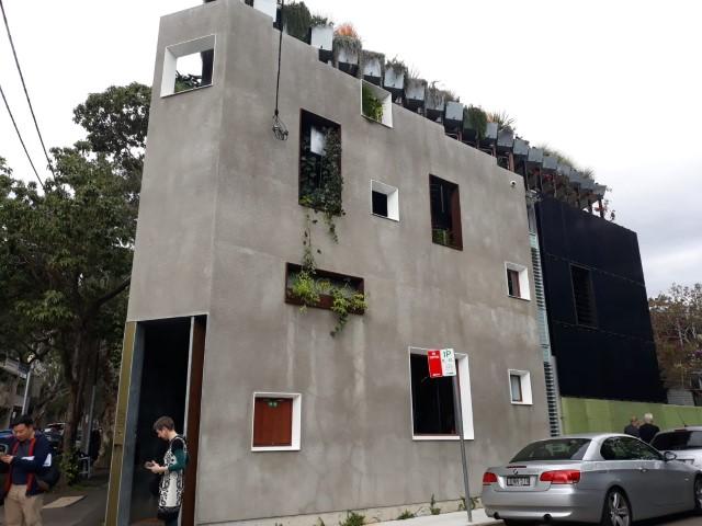 Insights: Jungle House